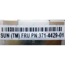 Серверная память SUN (FRU PN 371-4429-01) 4096Mb (4Gb) DDR3 ECC в Димитровграде, память для сервера SUN FRU P/N 371-4429-01 (Димитровград)