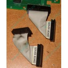 6017B0045701 Шлейф 24 pin для Intel C74974-401 T0043401-B01 корпуса SR2400 (Димитровград)