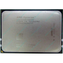 AMD Opteron 6128 OS6128WKT8EGO (Димитровград)