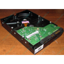 Жесткий диск 500Gb WD WD5000AAKX HP 634605-003 613208-001 7.2k SATA (Димитровград)